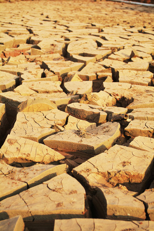 barrenness: Drought