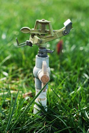 irrigate: Irrigation Editorial