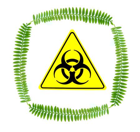 riesgo biologico: Hojas verdes con se�al de peligro biol�gico Foto de archivo