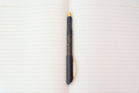 lined paper: Ink Pen on lined paper.