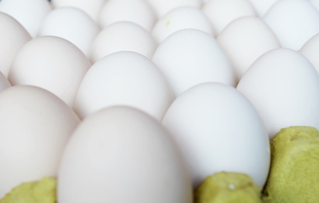 large group of items: egg on carton package Stock Photo