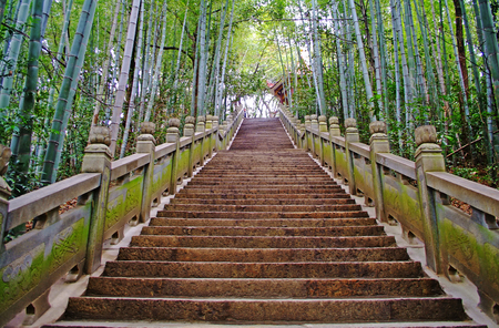 Park scenic mountaineer marble step stairs next to the bamboo forest