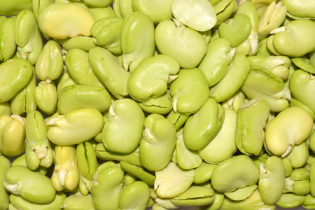 Broad beans close up view Stock Photo