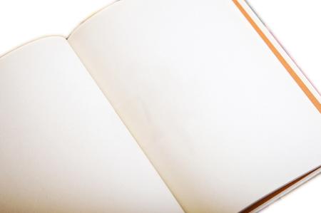 Blank Book Open 版權商用圖片 - 74759283