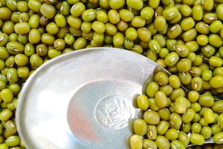 black gram: Mung beans in metal spoon on mung beans background. Stock Photo