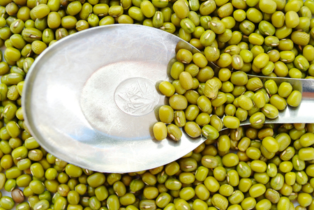 Mung beans in metal spoon on mung beans background. Stock Photo