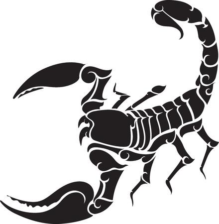 scorpio: scorpion