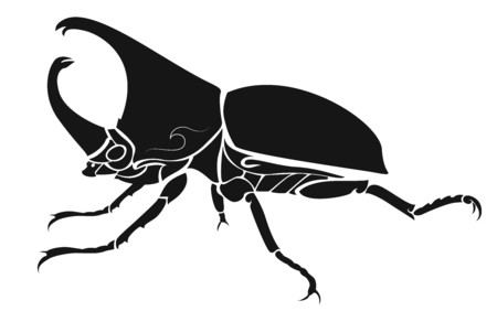 Insect reflect Threat