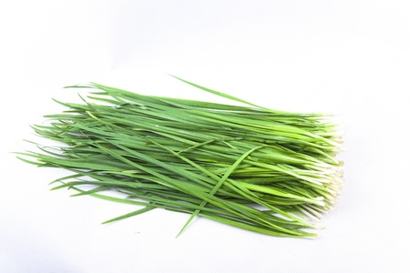 Chinese chive Stock Photo