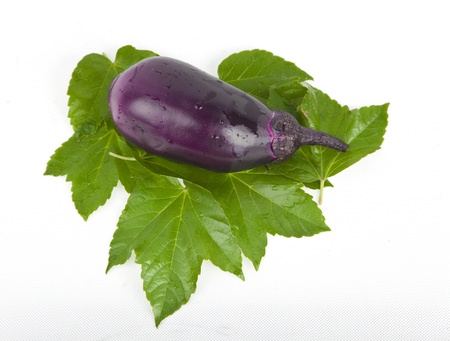 eggplant in green leaves studio shoot