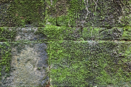 weathered: old weathered grungy wall