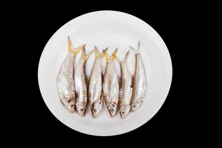 light water fish in the dish studio shoot Stock Photo - 15379839