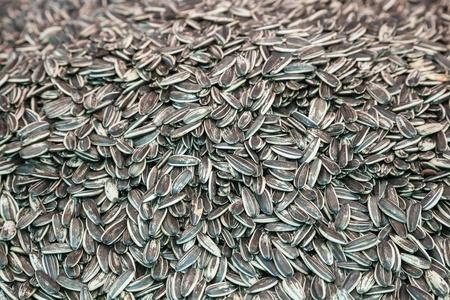 sunflowerseed: Close up of sunflower seed Stock Photo