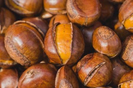 buckeye seed: sugar roasted chestnuts Stock Photo