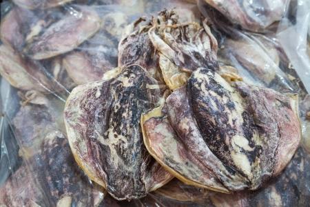 cuttlefish: preserved cuttlefish  Stock Photo