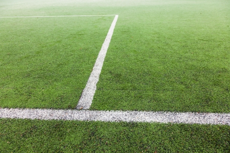 soccer field with green grass and painted white lines photo