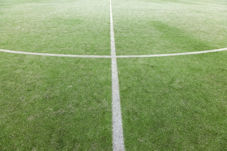 green soccer field with white lines photo