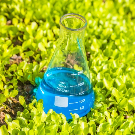 flask with blue solution in the lettuce seedling field Stock Photo - 18010448