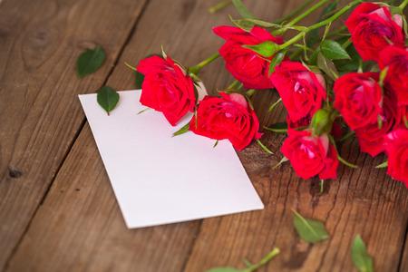 rose-bush: wooden table with rosebush studio shot