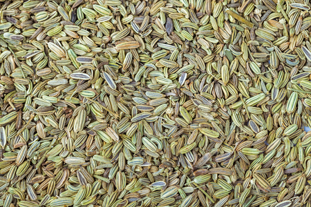 finocchio: fennel stacked together as background