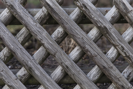 grey nails: wooden fence with a x pattern Stock Photo