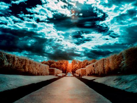 Infrared photo of garden Stock fotó