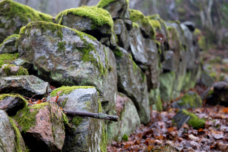 old crumbled stone fence with moss