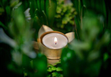 Small candle among Green plants Stock Photo