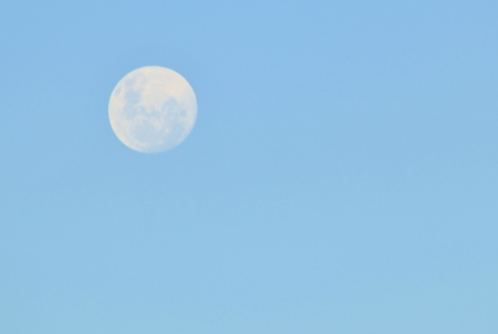 Moon - Full and white within the brilliant Blue sky  版權商用圖片