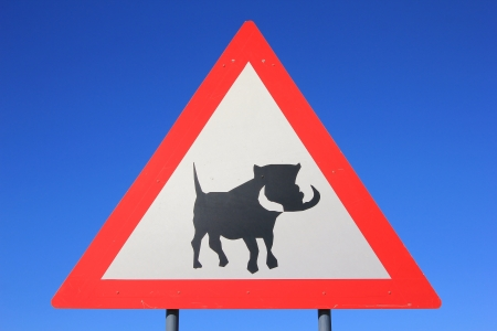 Road-sign of Danger - Potential Warthog Crossing photo