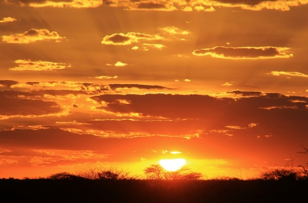 Sunset Background - Mysterious Golden Skies from the Dark Continent - Africa photo