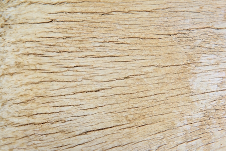 screensaver: Wood Background - Texture and Grain