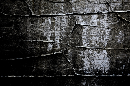 captivate: Abstract Art and Texture Background - Rustic Paint and Wall Stock Photo