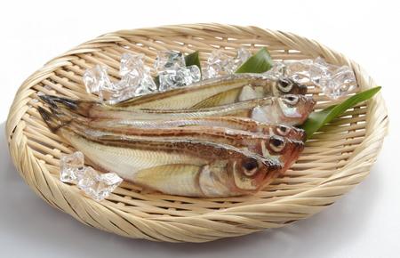 Fresh Sandfish with Ice Cube on Colander Stock Photo