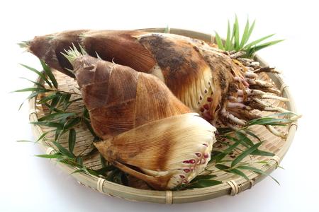 新鮮なタケノコ、和食を選んだ 写真素材