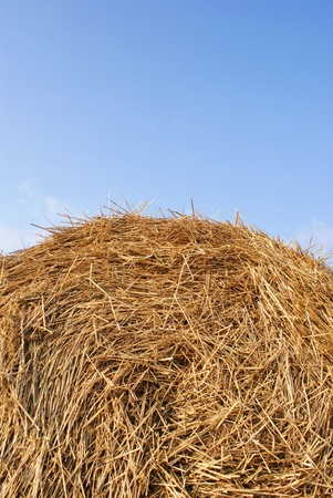Hay Straw Bale under the blue sky photo