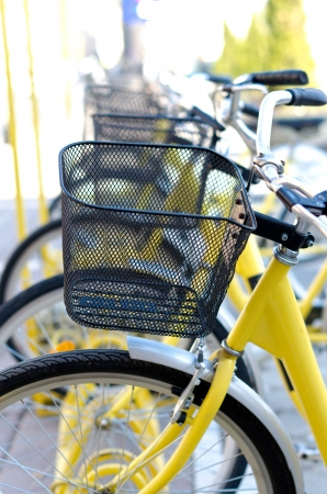 Yellow bicycles in a row Stock Photo - 16331186