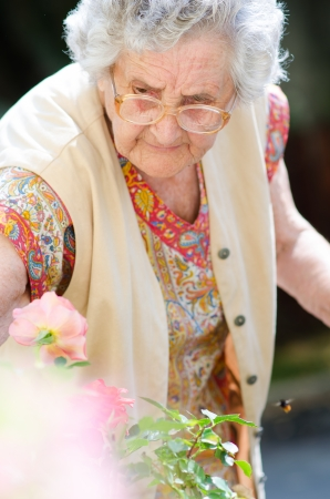 Happy old lady with her colorful flowers  Stock Photo