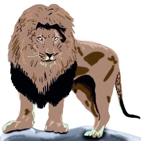 lion on a rock Фото со стока