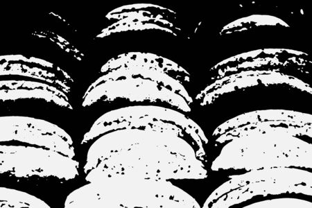 Abstract black white image with long and short intermittent lines made by brush. A monochrome image drawn by hand. Dirty shabby smears of black paint. Vector eps illustration.