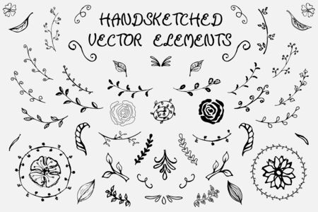 Hand-drawn vector elements. Spring elements. Flowers, branches with leaves and other natural patterns.