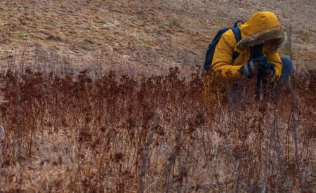 The photographer in the field shoots grass and unusual flowers. Red yellow style. An orange autumn field filled with withers, dead flowers. Photographer in a yellow jacket with a backpack.