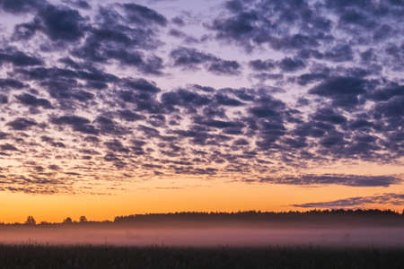 A beautiful sunset in the field, white mist spreads across the field. Orange sunset in the background of the forest.
