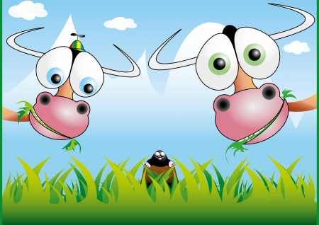 Funny cow illustration 2