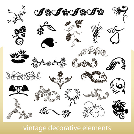 Vintage decorative elements isolated on white background Vector