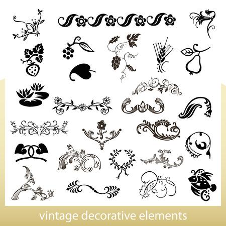 Vintage decorative elements isolated on white background