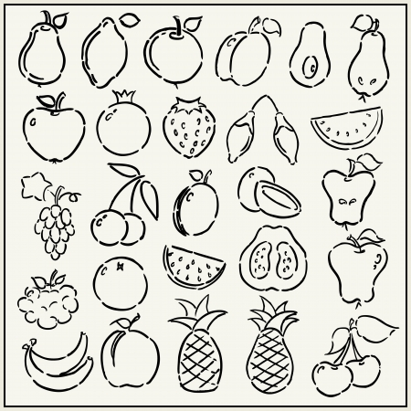 Collection of hand drawn fruits isolated on light background Vector