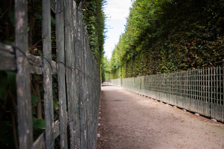dirt path: Wooden Fence and Green Bushes Alongside Dirt Path Stock Photo