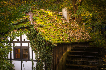 Half Timber House Cottage Village River Waterwheel Architecture Fairy Tale Building Forest Leaves Fantasy Warm Sunset Afternoon Cozy German European Story Standard-Bild