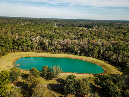 Small Body of Water from Aerial Drone View in Dense Forest Greenery Landscape Stok Fotoğraf